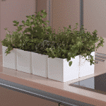 cubo herb planter