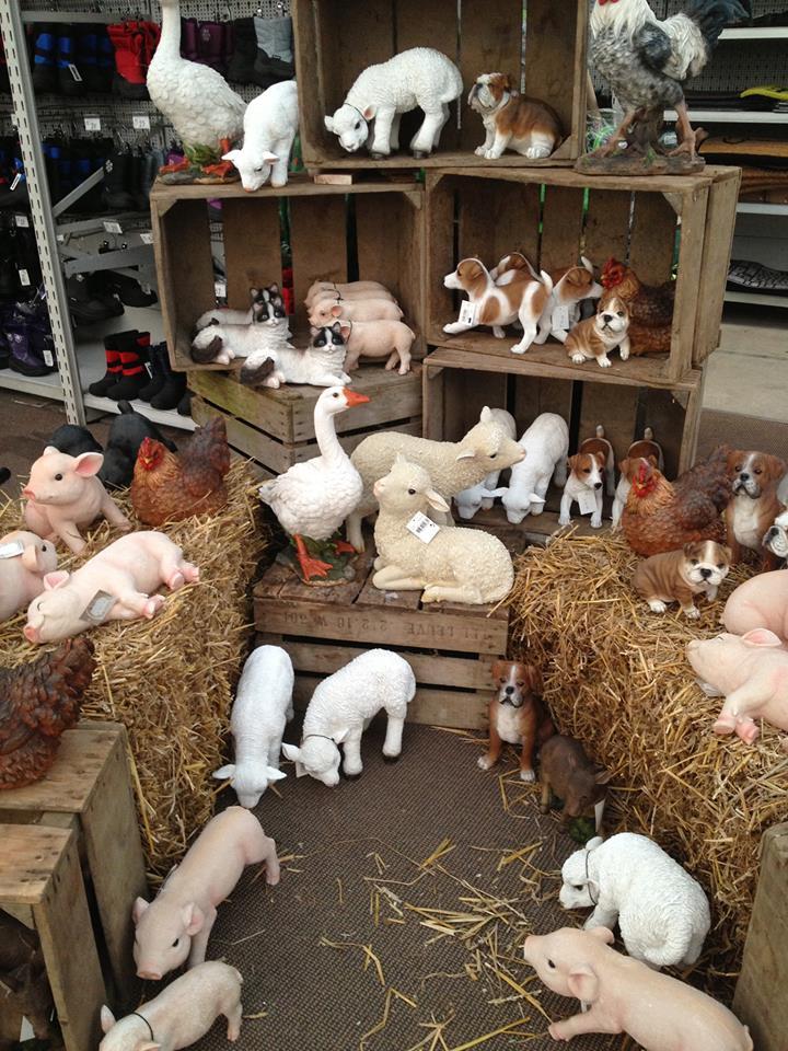 Decoratieve dieren croix chatelain - Animaux decoratif pour jardin ...