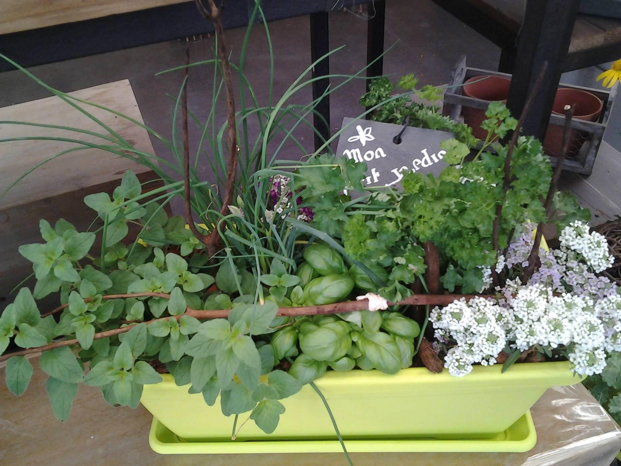 Que planter au mois de septembre istock formation optimiser espace potager au potager u - Que planter en novembre au potager ...
