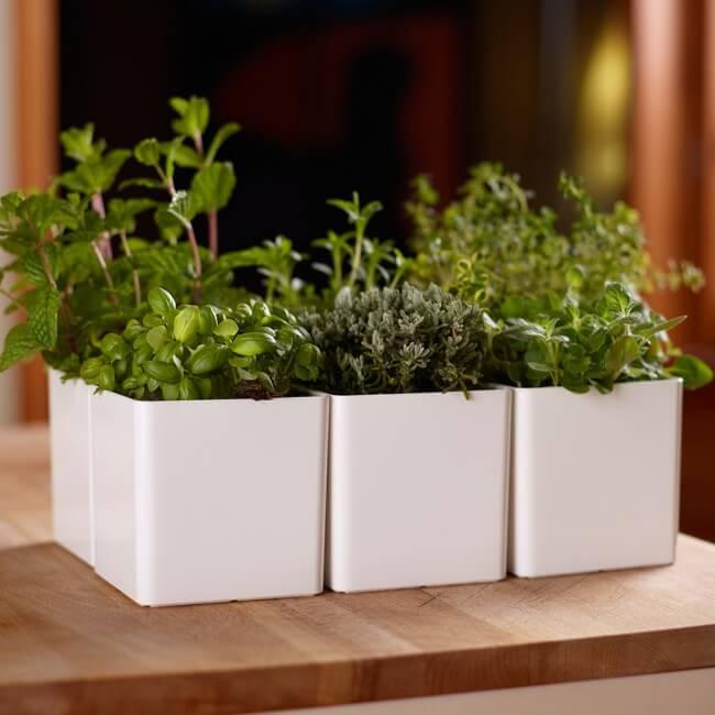 septempbre au jardin. Black Bedroom Furniture Sets. Home Design Ideas